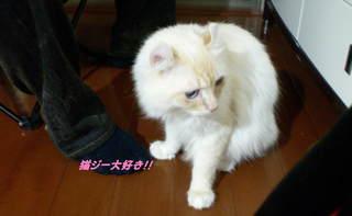 2010_0608pa-ru0001.JPG