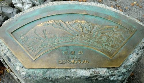 CIMG5937.JPG