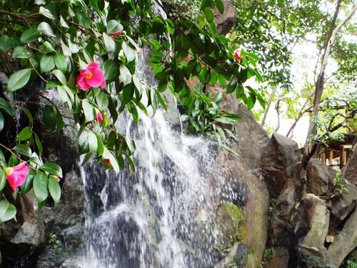 名主の滝公園p-2.jpg