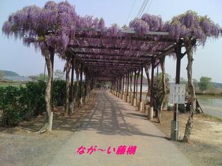 tganuma 009−2.JPG
